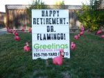 retirement flamingo