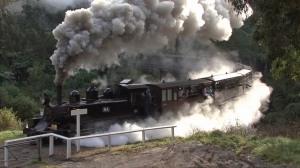 smokey train