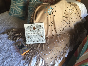 And admiring my shopping finds, a fringed suede shawl and an adult coloring book and colored pencils