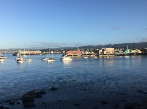 Before dinner a two mile walk along Monterey bay over to Cannery Row