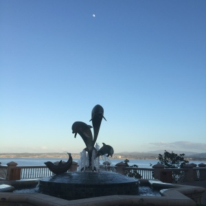 Ending with a delightful shot of a dolphin sculpture outside the Monterey Plaza Hotel with a early evening moon above