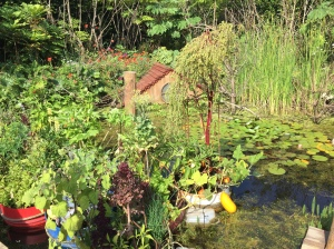 Garden Festival entry portraying top of home sunken by nature's forces in this future themed competeition